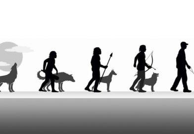 Mi is az az evolúció?